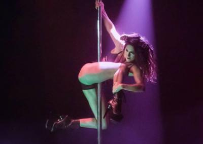 Jolene Theresa: Pole and Lyra
